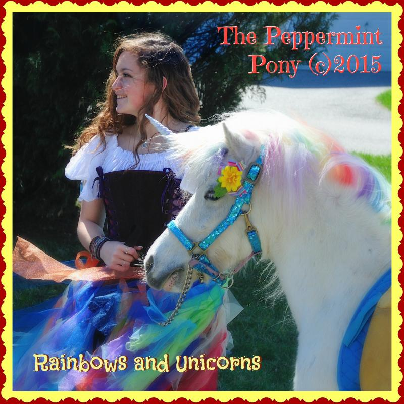 Rainbow Fairy Rainbow Unicorn Pony Lover's Package Party